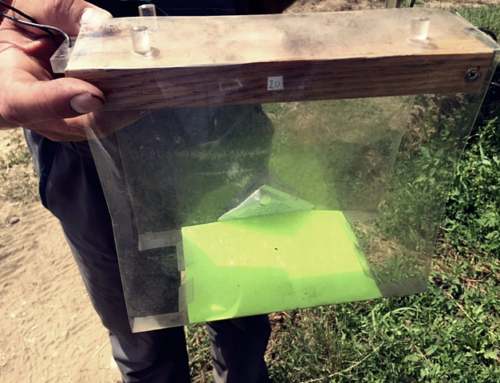 Build your own – Smart Insect Trap