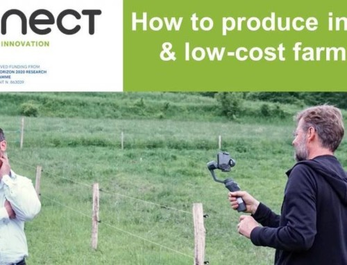 Interactive webinar on how to produce your own farm videos was organized by i2connect specialists